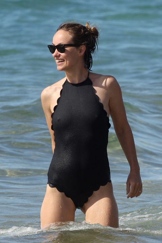 OLIVIA WILDE in Swimsuit at a Beach in Hawaii 11/28/2017