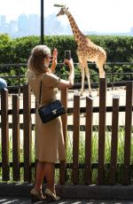 PARIS HILTON at Taronga Zoo in Sydney 12/01/2017