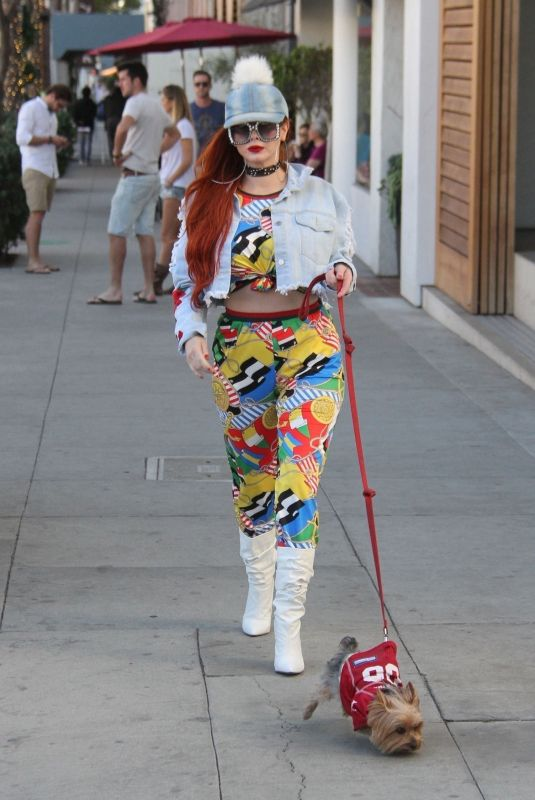 PHOEBE PRICE Out with Her Dog in Los Angeles 12/29/2017