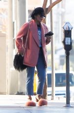 VANESSA HUDGENS Out and About in Los Angeles 12/29/2017