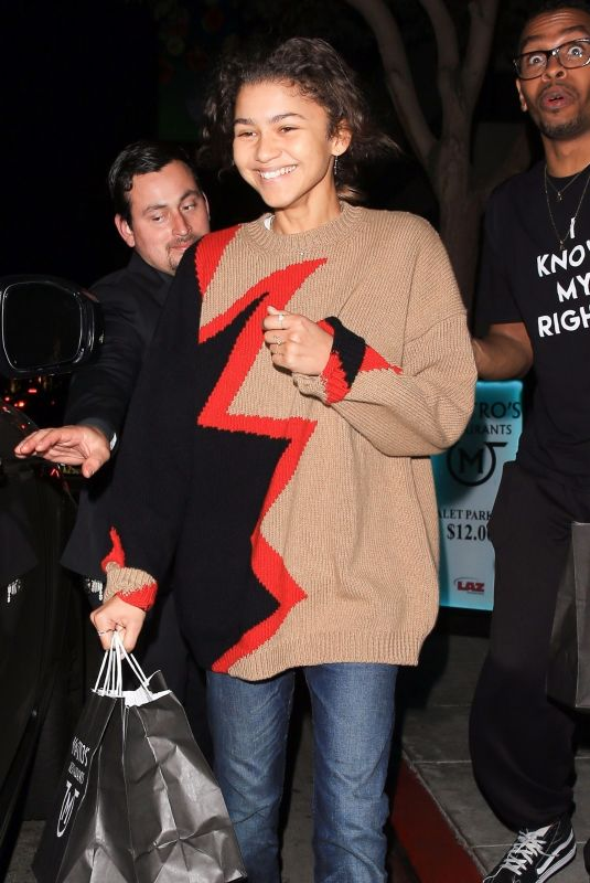 ZENDAYA COLEMAN Out for Dinner in Beverly Hills 12/01/2017