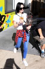 ALESSANDRA TORRESANI Out with Her Dog in Studio City 01/14/2018