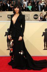 AMANDA BRUGEL at Screen Actors Guild Awards 2018 in Los Angeles 01/21/2018