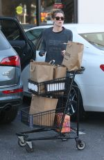 ASHLEY GREENE Shopping for Grocery in West Hollywood 01/25/2018