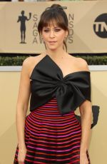 JACKIE TOHN at Screen Actors Guild Awards 2018 in Los Angeles 01/21/2018