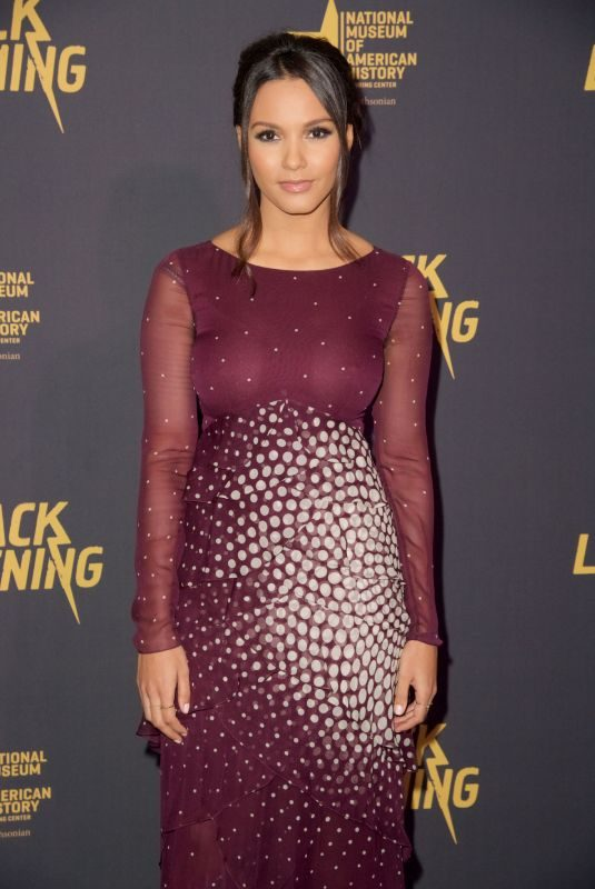 JESSICA LUCAS at Black Lightning Premiere in Washington 01/13/2018
