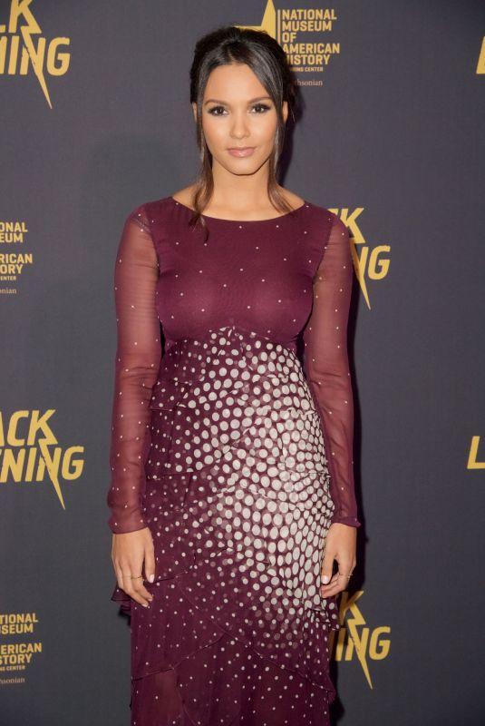 JESSICA LUCAS at Black Lightning Premiere in Washington 01/13/2018