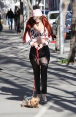 PHOEBE PRICE Out with Her Dog in Beverly Hills 01/25/2018