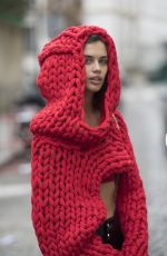 SARA SAMPAIO Out and About in Paris 01/23/2018