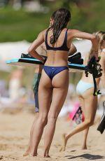 TAYLOR HILL in Bikini at a Beach in Hawaii 01/02/2018