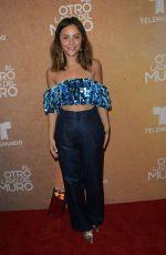 DANIELA WONG at Al Otro Lado Del Muro Screening in Miami 02/20/2018