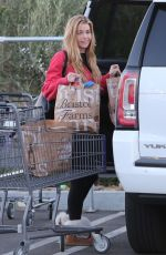 DENISE RICHARDS Out Shopping in Calabasas 02/16/2018