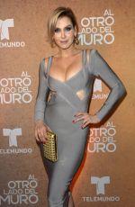 GABRIELA VERGARA at Al Otro Lado Del Muro Screening in Miami 02/20/2018