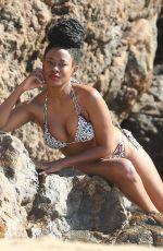 KEYLA MCNEELY in Bikini at a Beach in Malibu 02/24/2018