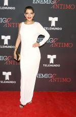 MARIA DEL CARMEN FENIX at Enemigo Intimo TV Show Premiere in Mexico City 02/15/2018