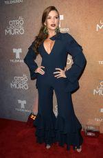 MARJORIE DE SOUSA at Al Otro Lado Del Muro Screening in Miami 02/20/2018