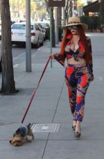 PHOEBE PRICE Out with Her Dog in Beverly Hills 01/31/2018