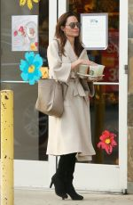 ANGELINA JOLIE Out Shopping in Studio City 03/11/2018