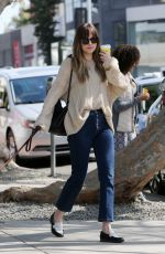 DAKOTA JOHNSON Out Shopping in Los Angeles 03/01/2018