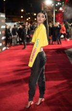 NEELAM GILL at The Defiant Ones Premiere in London 03/15/2018
