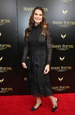 BROOKE SHIELDS at Harry Potter and the Cursed Child Broadway Opening in New York 04/22/2018