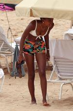 JASMINE TOOKES in Bikini Top at a Beach in Maui 04/01/2018