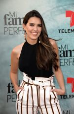 LAURA VEIRA at My Perfect Family Screening in Miami 04/05/2018