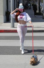 PHOEBE PRICE Out Walks Her Dog in Beverly Hills 04/19/2018
