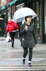 SUSAN SARANDON Out and About in New York 04/16/2018