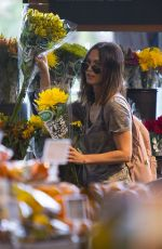 MEGAN FOX Out Shopping in New Orleans 05/22/2018