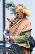NAOMI WATTS Out with Her Dogs in New York 05/17/2018