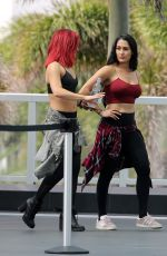 NIKKI and BRIE BELLA, NATALYA NEIDHART and SHARNA BURGESS Out in Miami Beach 05/30/2018