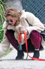 RACHAEL TAYLOR Out With Her Dog in Los Angeles 05/12/2018