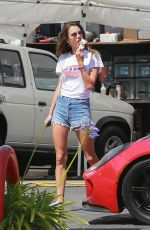 ALESSANDRA AMBROSIO in Denim Shorts Out Shopping in Brentwood 06/15/2018