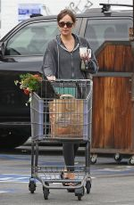 DAKOTA JOHNSON Shopping at a Grocery Store in Los Angeles 06/16/2018