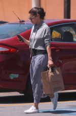 MILA KUNIS Out Shopping in Los Angeles 06/11/2018