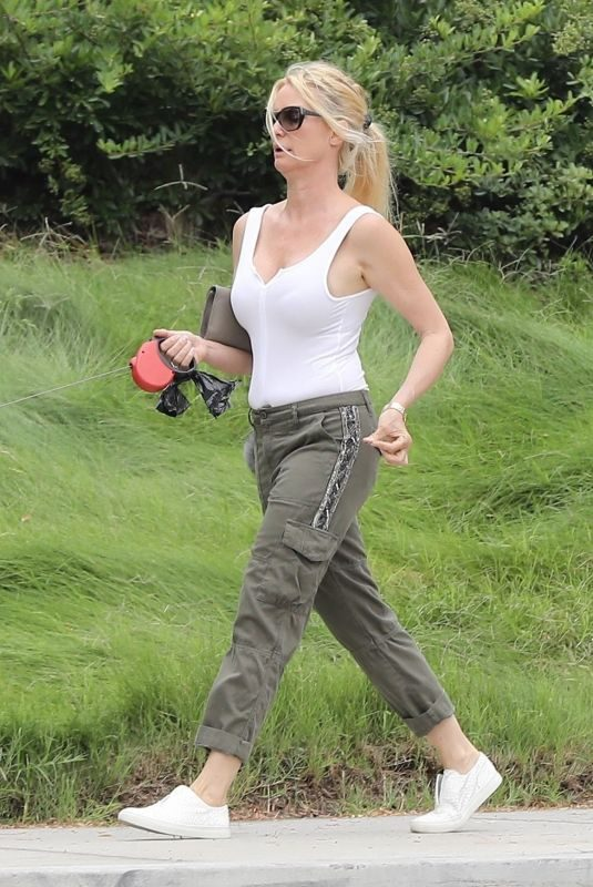 NICOLLETTE SHERIDAN Out with Her Dog in Calabasas 06/23/2018