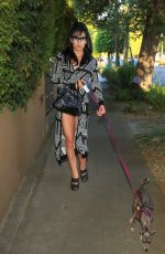 PLASTIC MARTYR Out with Her Dog in Los Angeles 06/27/2018