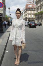 ARAYA HARGATE at Elie Saab Show at Paris Fashion Week 03/03/2018