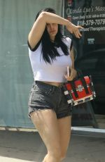 ARIEL WINTER in Shorts Out in Los Angeles 07/10/2018