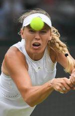 CAROLINE WOZNIACKI at Wimbledon Tennis Championships in London 07/04/2018
