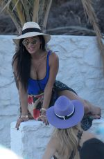 NICOLE SCHERZINGER in Swimsuit at a Beach in Mykonos 07/01/2018