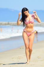 NICOLE WILLIAMS in Bikini on the Beach in Malibu 07/09/2018