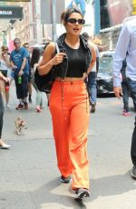 PRIYANKA CHOPRA Out with Her Dog in  New York 07/13/2018