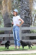 CALISTA FLOCKHART Out with Her Dogs in Santa Monica 08/20/2018