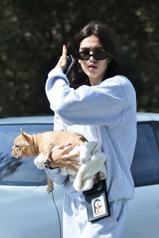 AMELIA HAMLIN with Her Dog in Beverly Hills 10/06/2018