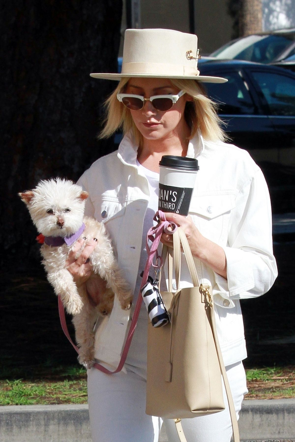 Ashley Tisdale Out With Her Dog In Studio City 10272018 Hawtcelebs