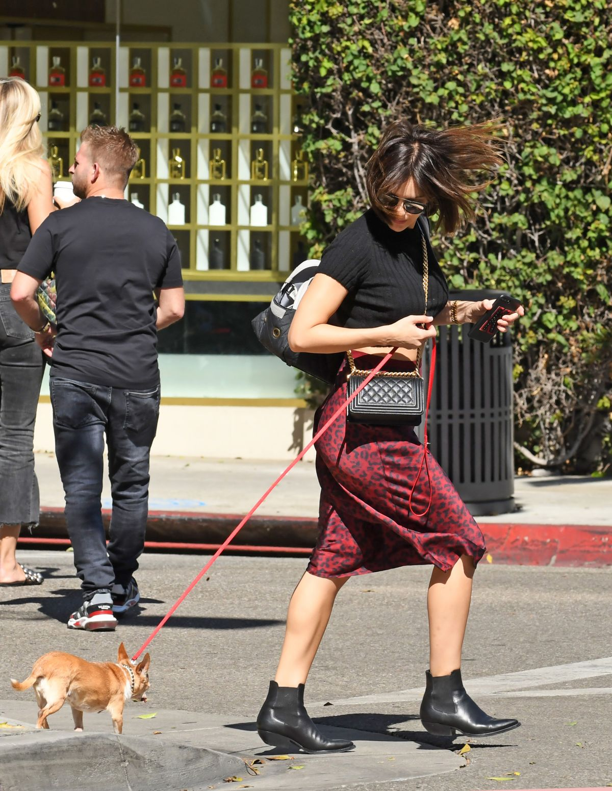 KATHARINE MCPHEE Walks Her Dogs Out in Los Angeles 11/25