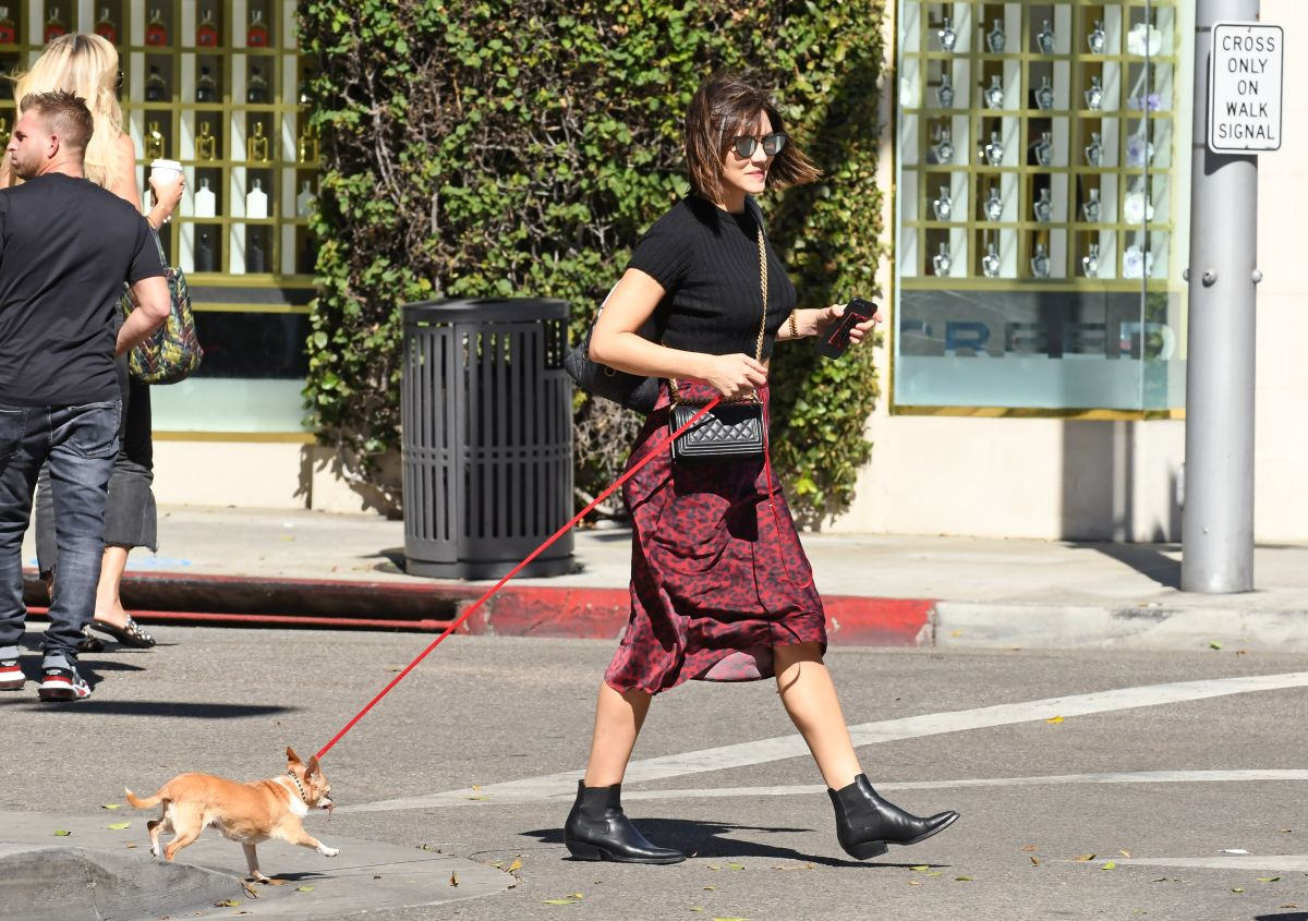 KATHARINE MCPHEE Out with Her Dog in Los Angeles 07/22