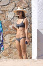 ALESSANDRA AMBROSIO in Bikini on the Beach in Cabo San Lucas 11/04/2018